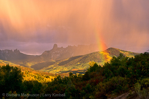 Rainbow touching oaks and aspens in autumn; Owl Creek Pass, Colorado
