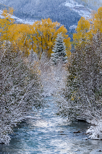 Fresh new snow decorates an autumn landscape along the Cimarron River, Owl Creek Pass, Colorado
