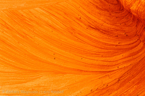 Sandstone swirls, Crack Canyon, San Rafael Swell, Utah